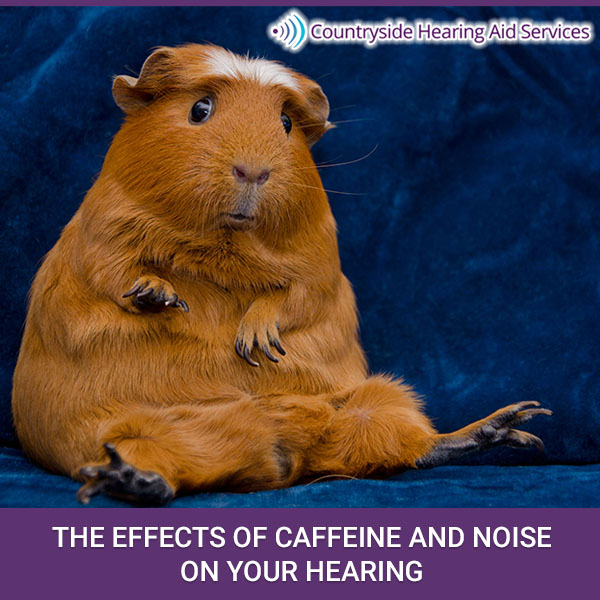The Effects of Caffeine and Noise on Your Hearing