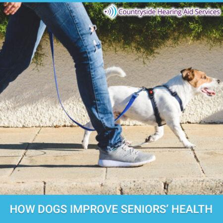 How Dogs Improve Seniors' Health